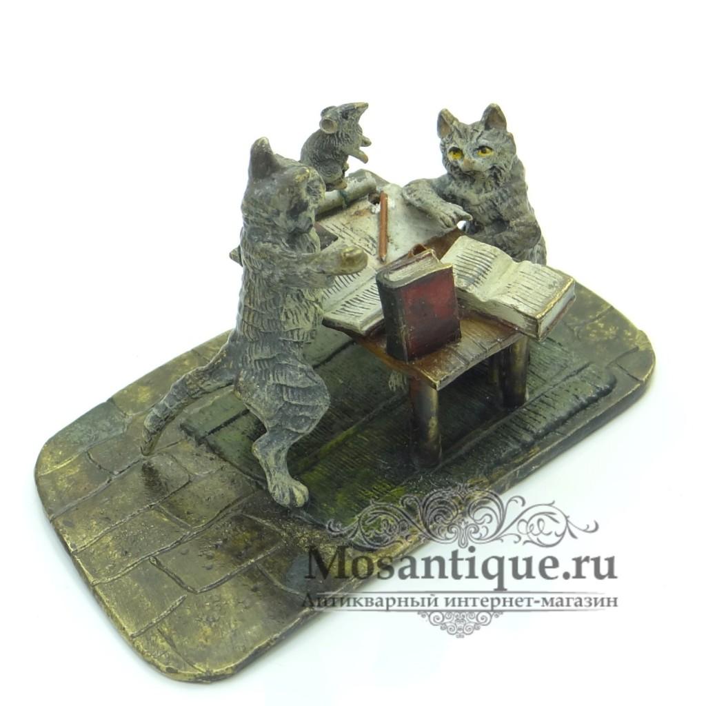 Коты за учёбой