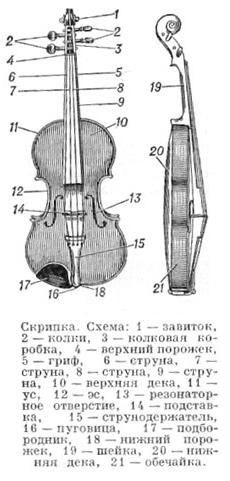 Схема скрипки